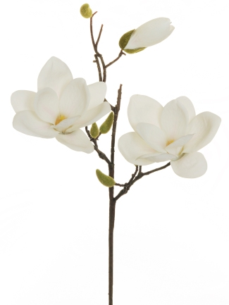 MAGNOLIA SPRAY