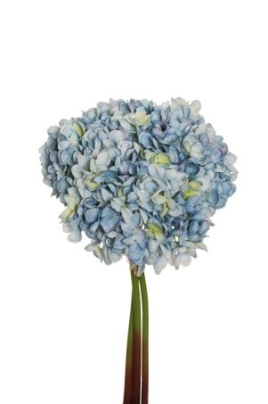 POP COCRN HYDRANGEA LG.BLUE