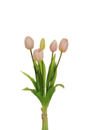 RUBBER TULIP PINK
