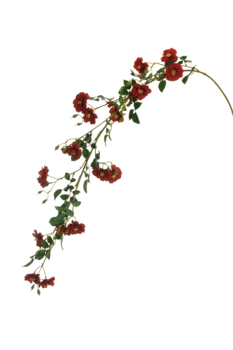 WILD ROSE HANGING BRANCH RED
